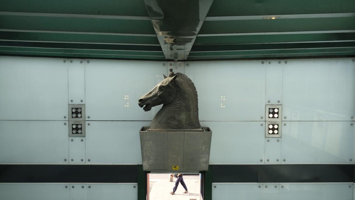 Ai piedi del Cavallo #487
